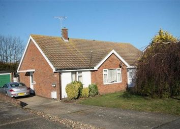 Thumbnail 3 bed semi-detached bungalow to rent in Rochford Way, Walton On The Naze