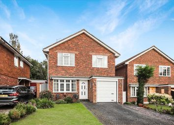 Thumbnail 4 bed detached house for sale in Church Close, Clapham, Worthing