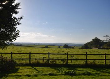 Thumbnail 4 bed detached house for sale in High Bullen, Torrington