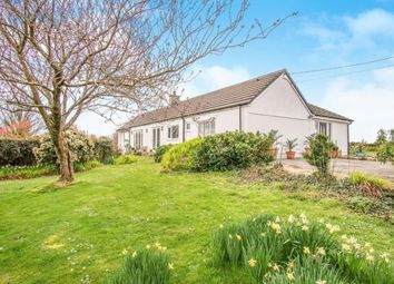 Thumbnail 4 bed bungalow for sale in Penmynydd, Anglesey, Sir Ynys Mon