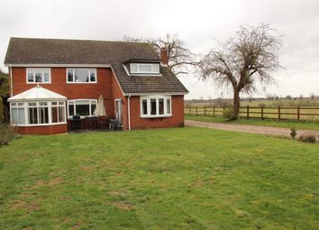 Thumbnail 4 bed detached house to rent in East Avenue, Brundall, Norwich