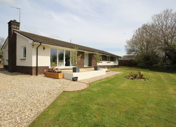 Thumbnail 5 bed detached bungalow for sale in South Molton Street, Chulmleigh