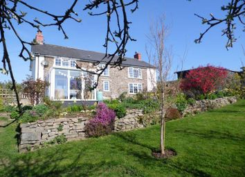 Thumbnail 3 bed detached house for sale in New Mills, Newtown