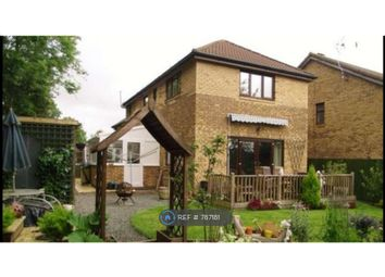 Thumbnail 3 bed detached house to rent in Vienna Grove, Milton Keynes