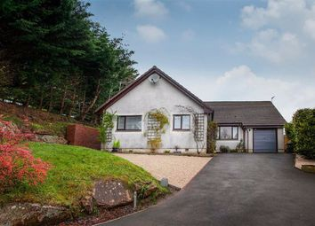 Thumbnail 6 bed detached house for sale in Gillbrae, Dumfries