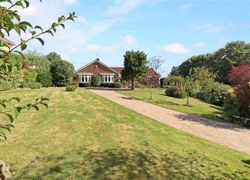 Thumbnail 5 bed detached bungalow for sale in Wyck Lane, Wyck, Alton, Hampshire