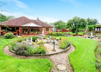 Thumbnail 3 bed detached bungalow for sale in Dalby Avenue, Bushby, Leicester