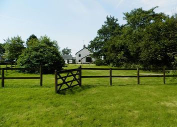 Thumbnail 4 bed detached house for sale in Saron, Llandysul