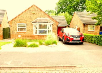 Thumbnail 2 bed bungalow to rent in Casterbridge Road, Ferndown