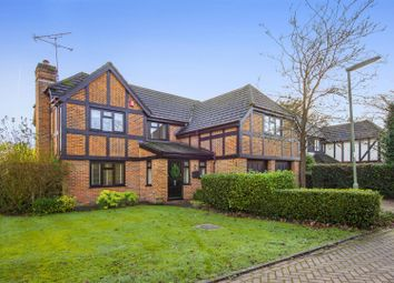 Thumbnail 5 bed detached house to rent in Hedingham Close, Horley