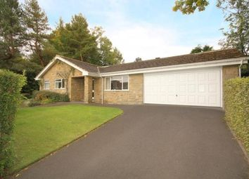 Thumbnail 4 bedroom bungalow for sale in Stumperlowe Park Road, Sheffield, South Yorkshire