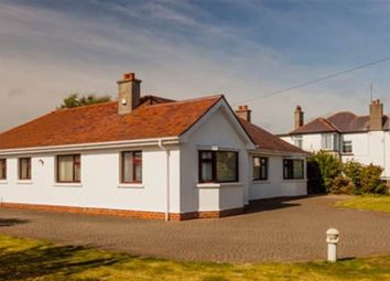 Thumbnail 4 bed bungalow for sale in Manse Road, Kilkeel