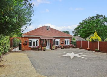 Thumbnail 5 bed detached bungalow for sale in Lightwater, Surrey