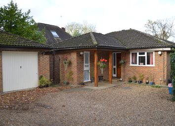 Thumbnail 6 bed bungalow to rent in Hampton Rd, Twickenham