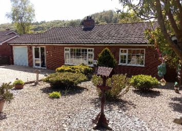 Thumbnail 3 bed detached house for sale in Pantyffridd, Berriew, Welshpool
