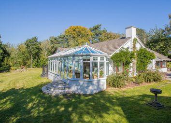 Thumbnail 4 bedroom detached bungalow for sale in Westerland Marldon Devon, Torquay