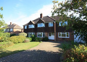Thumbnail 4 bed semi-detached house to rent in St. Mildreds Road, Guildford
