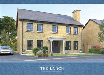 Thumbnail 4 bedroom detached house for sale in Strawberry Hill Lane, Ballynahinch Road, Lisburn