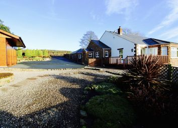 Thumbnail 3 bedroom detached bungalow for sale in The Orchard, Ruckcroft, Carlisle