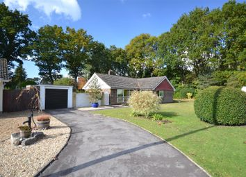 Thumbnail 3 bed detached bungalow for sale in Paddock Close, St. Ives, Ringwood