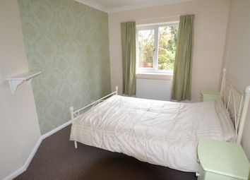 Thumbnail Room to rent in Courtlands, Maidenhead