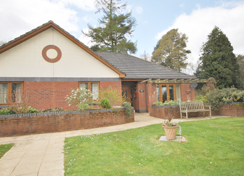 Thumbnail 2 bed bungalow for sale in 11 The Paddocks, Gittisham Hill Park, Honiton, Devon