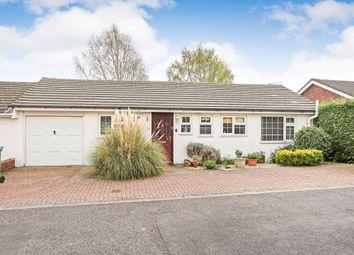 Thumbnail 3 bedroom semi-detached bungalow for sale in Belle Vue Road, Old Basing, Basingstoke