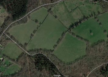Thumbnail Equestrian property for sale in Prestwick Lane, Chiddingfold, Godalming, Surrey