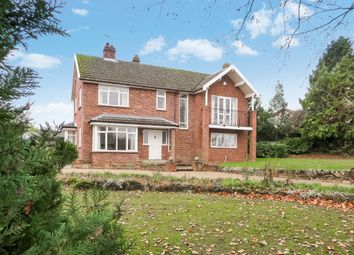 Thumbnail 4 bed detached house for sale in Fairview Road, Halesworth