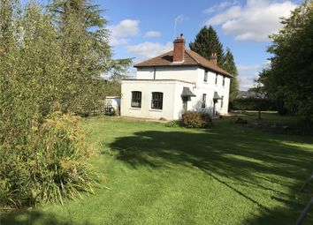 Thumbnail 4 bed detached house to rent in West Meon, Petersfield, Hampshire