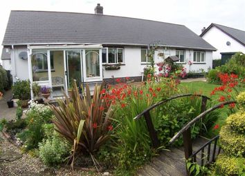 Thumbnail 3 bed detached bungalow for sale in Parc Ffos, Aberaeron, Ceredigion
