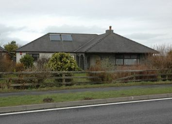 Thumbnail 4 bedroom detached bungalow for sale in Tanygroes, Cardigan, Ceredigion