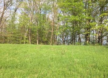 Thumbnail Land for sale in Ruskey Lane Ln Hyde Park, Clinton, New York, 12514, United States Of America