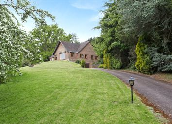 Thumbnail 3 bed detached bungalow for sale in Petworth Road, Witley, Godalming, Surrey