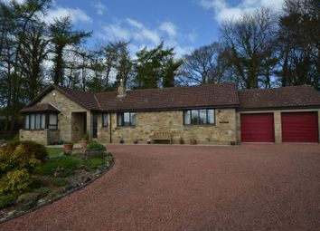 Thumbnail 3 bed detached bungalow for sale in The Woodlands, Swarland, Morpeth