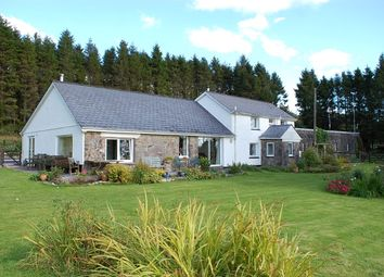 Thumbnail 4 bed detached house for sale in Capel Isaac, Llandeilo
