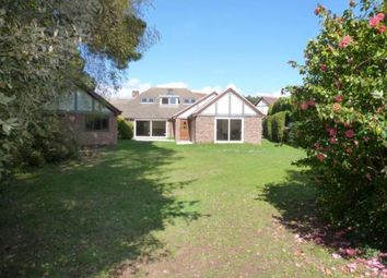 Thumbnail 6 bed bungalow for sale in St. Catherines Road, Hayling Island