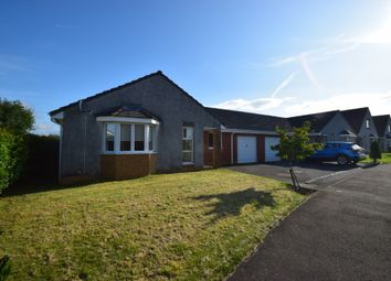 Thumbnail 4 bed bungalow for sale in Bute Road, Cumnock, East Ayrshire