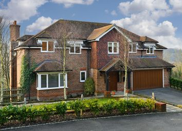 Thumbnail 5 bed detached house for sale in Hazelwood Lane, Chipstead