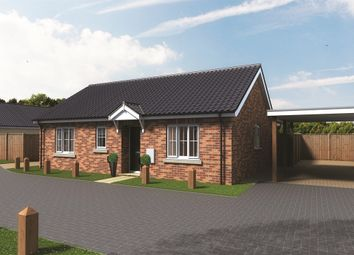 Thumbnail 3 bed detached bungalow for sale in Sewell Gardens, Old Catton, Norwich