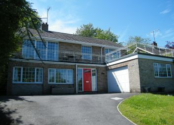 Thumbnail 5 bedroom detached house for sale in Wessington Park, Calne