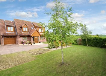 Thumbnail 3 bed detached house for sale in Poplar Hill, Stowmarket
