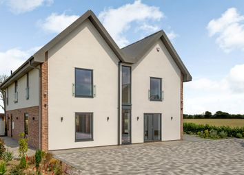 Thumbnail 4 bed detached house for sale in High London Lane, Winfarthing, Diss