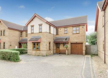 Thumbnail 5 bed property to rent in Pastern Place, Downs Barn