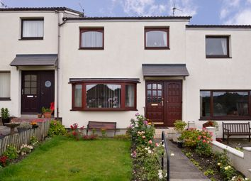 Thumbnail 3 bed terraced house for sale in Cheviot Terrace, Coldstream