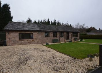 Thumbnail 4 bed bungalow for sale in Warenford, Belford