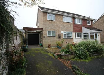 Thumbnail 3 bed semi-detached house for sale in Mews Court, Chelmsford