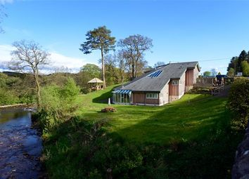 Thumbnail 4 bed detached house for sale in Newcastleton, Scottish Borders