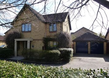 Thumbnail 4 bed detached house to rent in Morebath Grove, Furzton, Milton Keynes