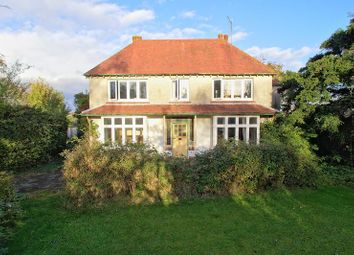 Thumbnail 4 bed detached house for sale in Elm Grove, Barnham, Bognor Regis